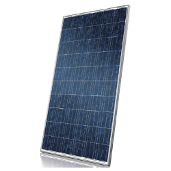 Canadian Solar CS6P - 255wp Solar Panel Image