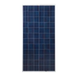 Renesola Virtus II - 300wp Solar Panel Image