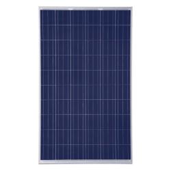Trina Solar - 250wp Solar Panel Image